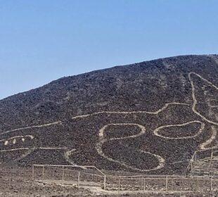 Figura de felino gigante en desierto de Perú
