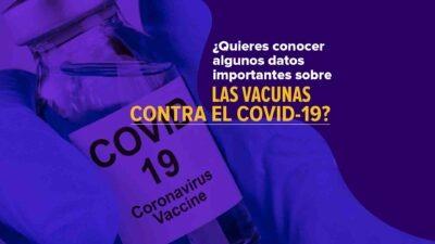 Datos importantes sobre vacunas contra el Covid - Noticias de Ecuador